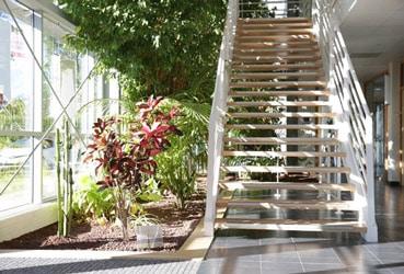 entretien-plantes - home végétal