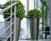 plantes en pot en haut d'un escalier