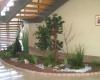jardin intérieur home végétal sous un escalier