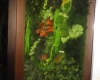murs-vegetaux-home-vegetal-05