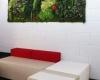 murs-vegetaux-home-vegetal-06