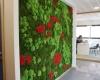 murs-vegetaux-home-vegetal-08