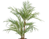 plantes-artificielles-home-vegetal-areca-palm-170-cm
