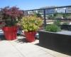 terrasses-et-balcons-home-vegetal-05