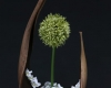 bouquet-accueil-home-vegetal-2