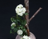 bouquet-accueil-home-vegetal-5