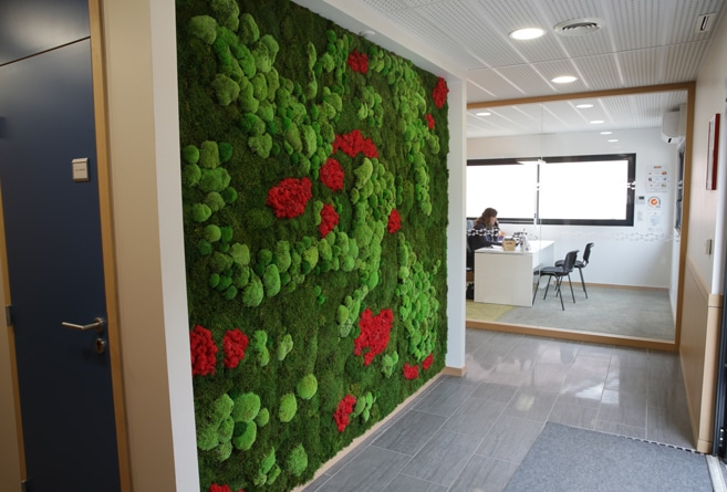 murs-vegetaux-home-vegetal-08.jpg